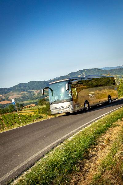 bus-turismo-territorio5