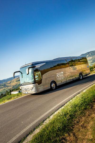 bus-turismo-territorio9